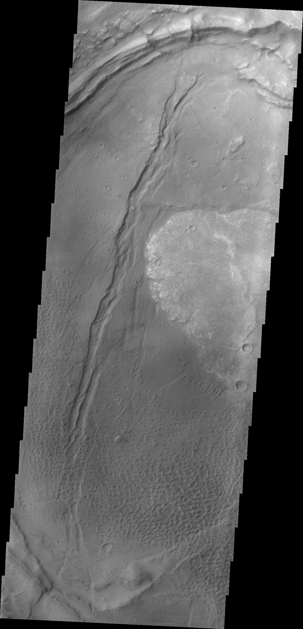 Dunes appear on the floor of Nili Patera, one of the two volcanic calderas of Syrtis Major in this image taken by NASA's 2001 Mars Odyssey.