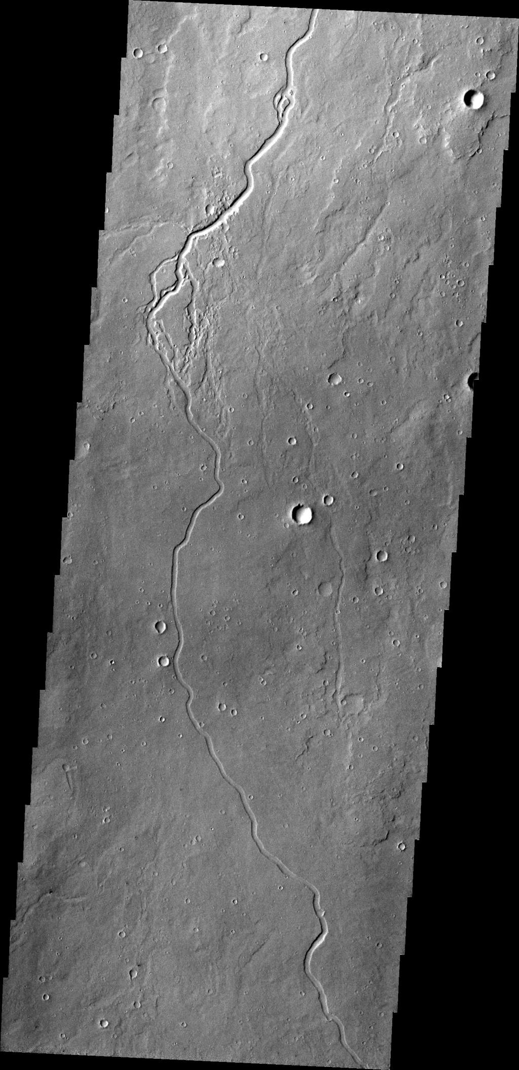 This image captured by NASA's 2001 Mars Odyssey shows just one of many lava channels located on the Elysium Mons volcanic complex.