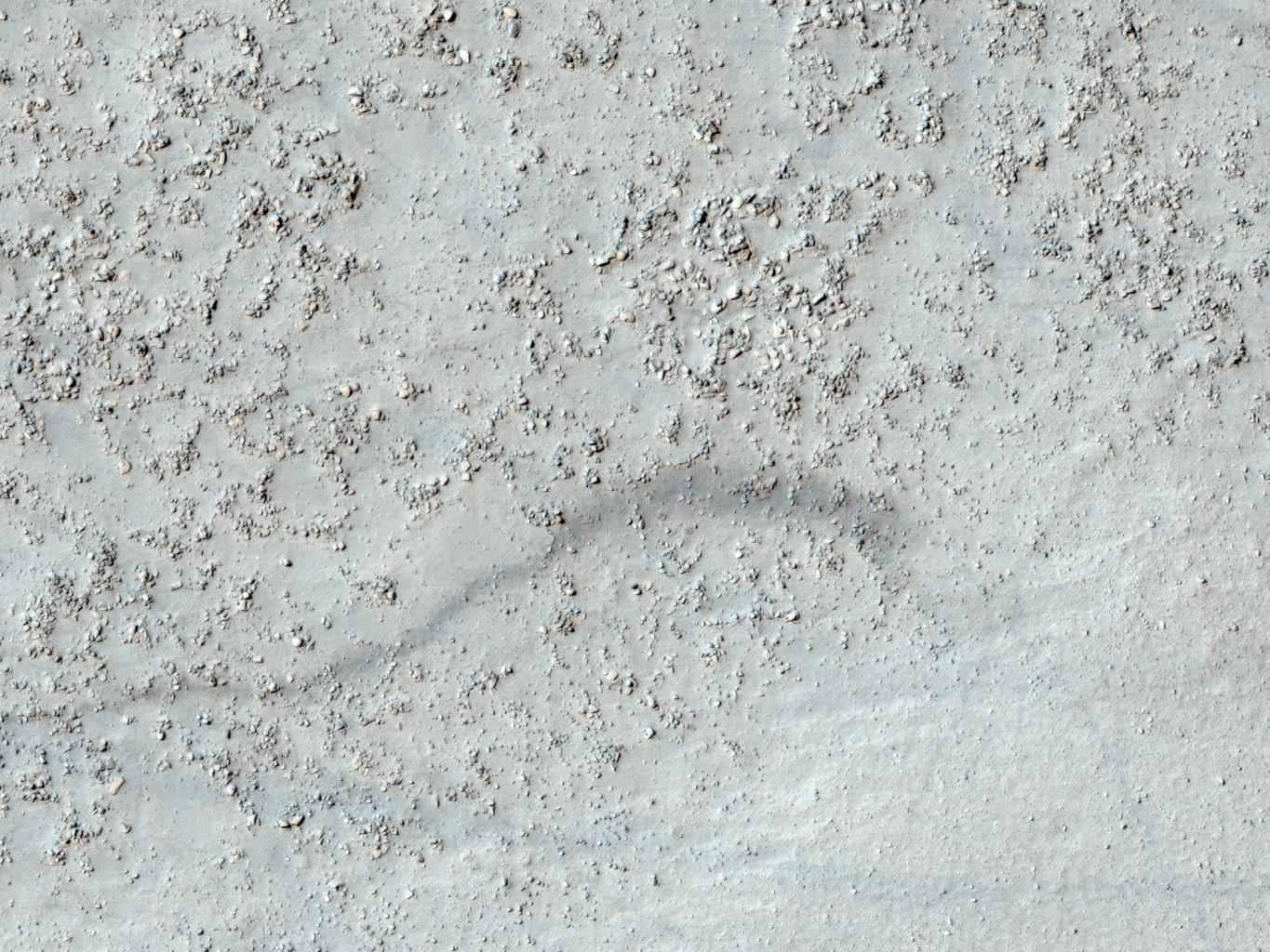 This image from NASA's Mars Reconnaissance Rover shows a degraded impact crater in the southern highlands. Part of the crater rim is visible at the top and bottom of the image, with the boulder-covered crater floor in the center.