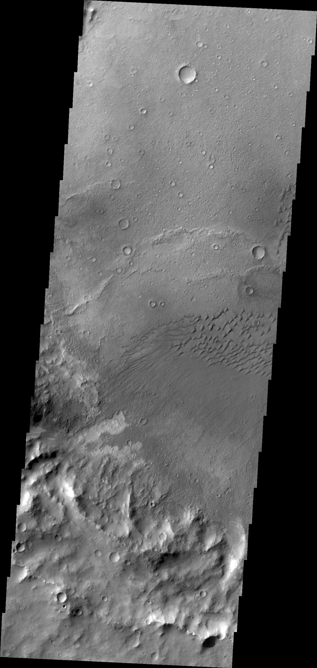 The dunes in this image captured by NASA's 2001 Mars Odyssey are located in an unnamed crater in Terra Cimmeria.