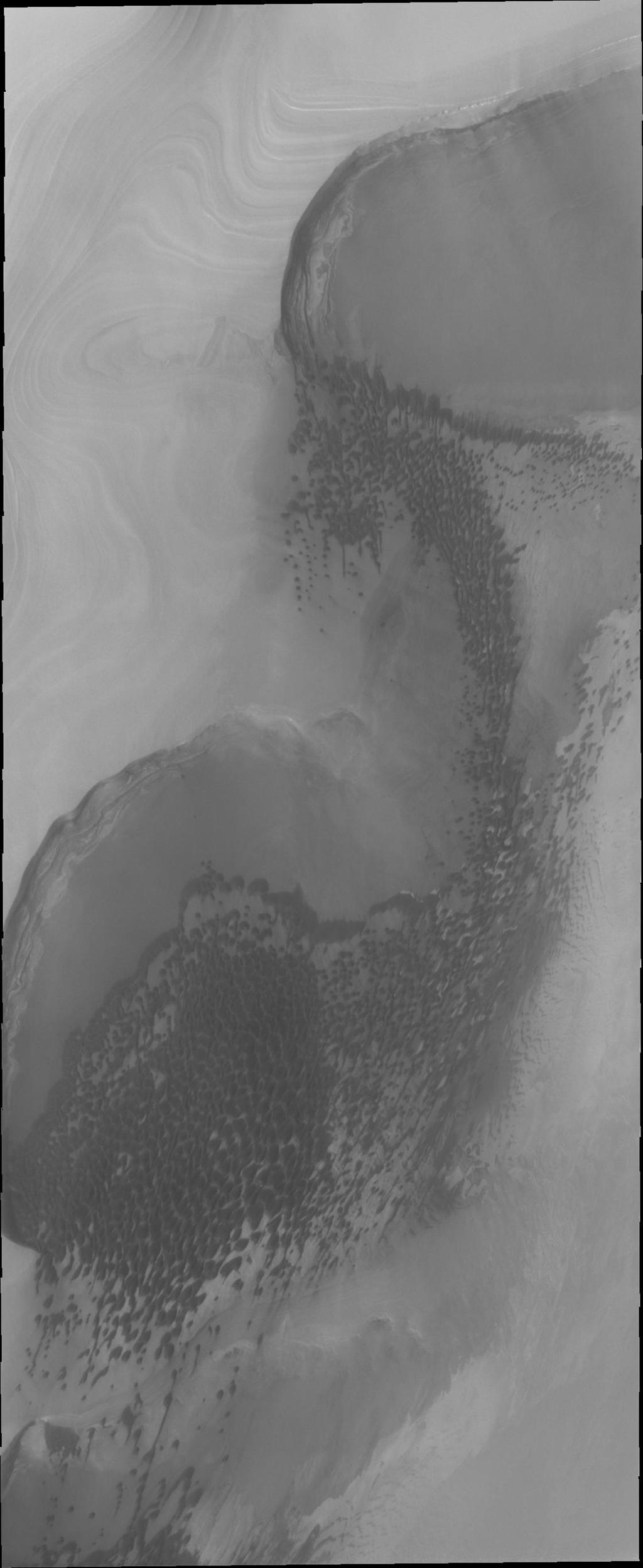 Sand dunes form large fields, called ergs, around the north polar cap of Mars. This image taken by NASA's Mars Odyssey shows are region of dunes at the cap margin.