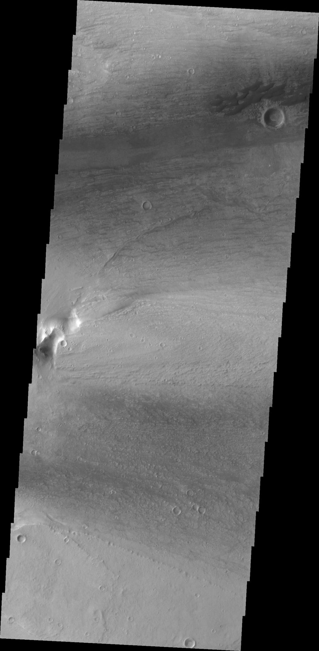 This small group of dunes in located within Kasei Valles. This image from NASA's Mars Odyssey was captured on June 16, 2010.