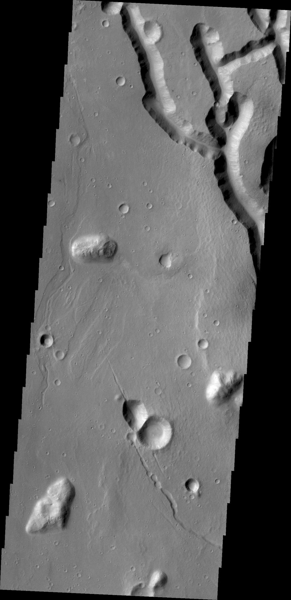 What appear to be channels in this image from NASA's Mars Odyssey is the dissection of the higher elevations on the margin of Chryse Chaos. Continued dissection eventually creates the block/mesa forms termed chaos on Mars.