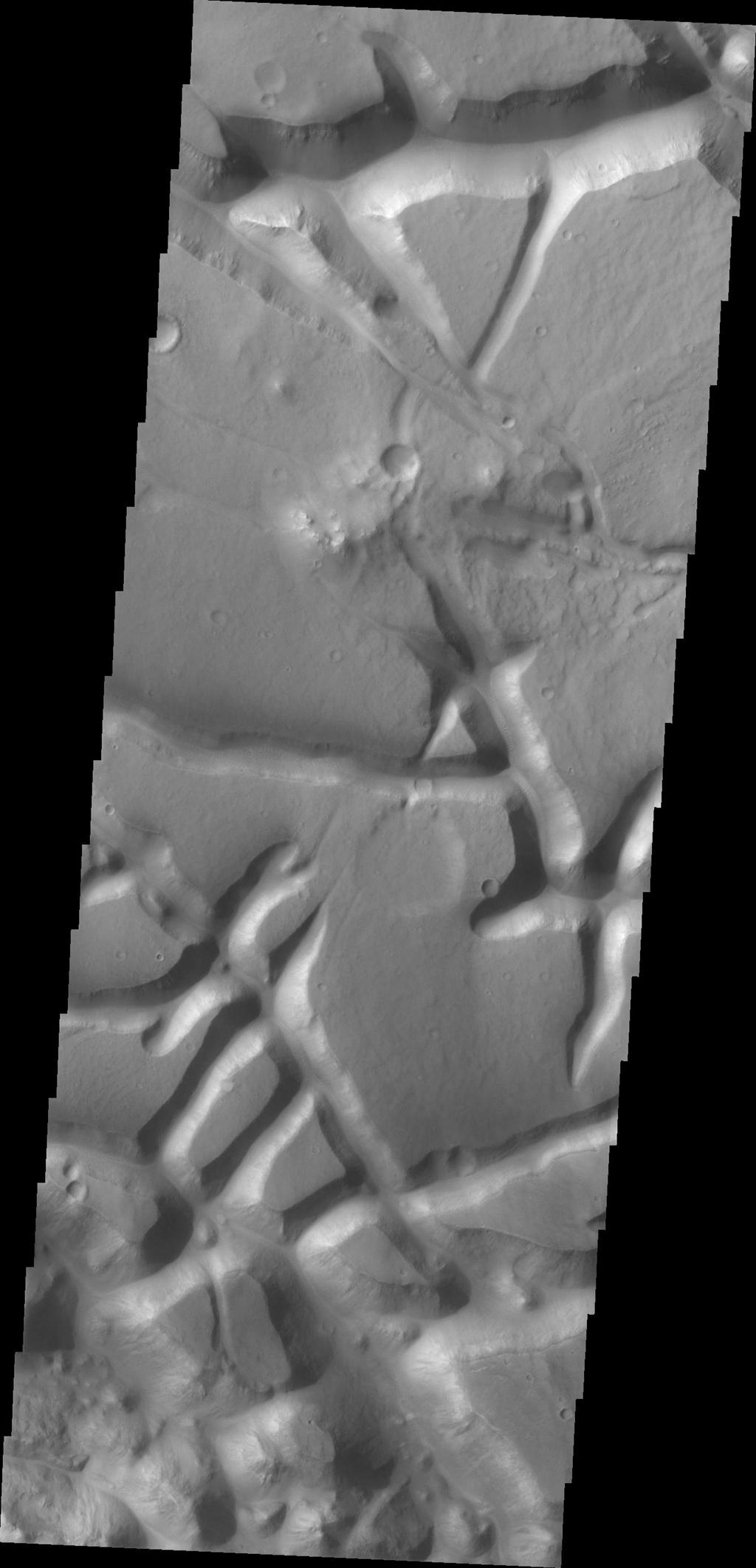 The tectonic fractures in this image captured by NASA's Mars Odyssey on July 8, 2010 are part of Aram Chaos.