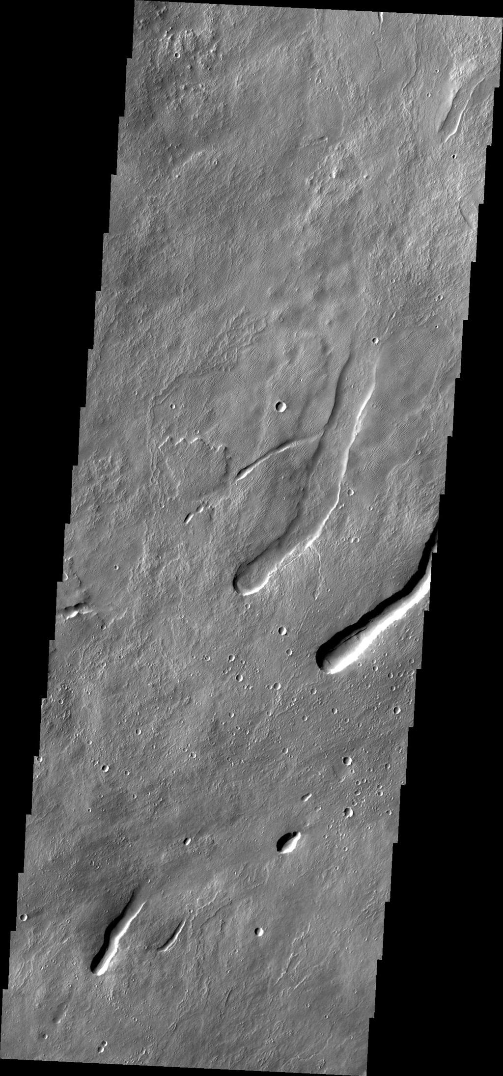 This image from NASA's Mars Odyssey caputured on July 23, 2010 off the northern flank of Arsia Mons shows collapse/vent features.
