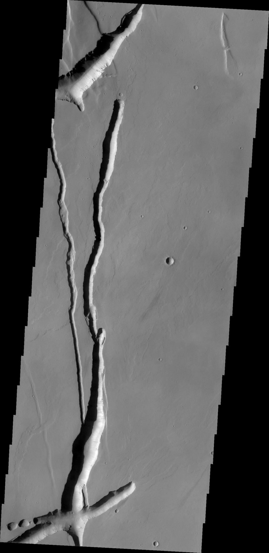 The depressions in this image from NASA's Mars Odyssey likely formed due to both volcanic and tectonic forces. Tectonic forces likely account for some of the depressions, while collapse into lava tubes and lava flow erosion account for the remainder.