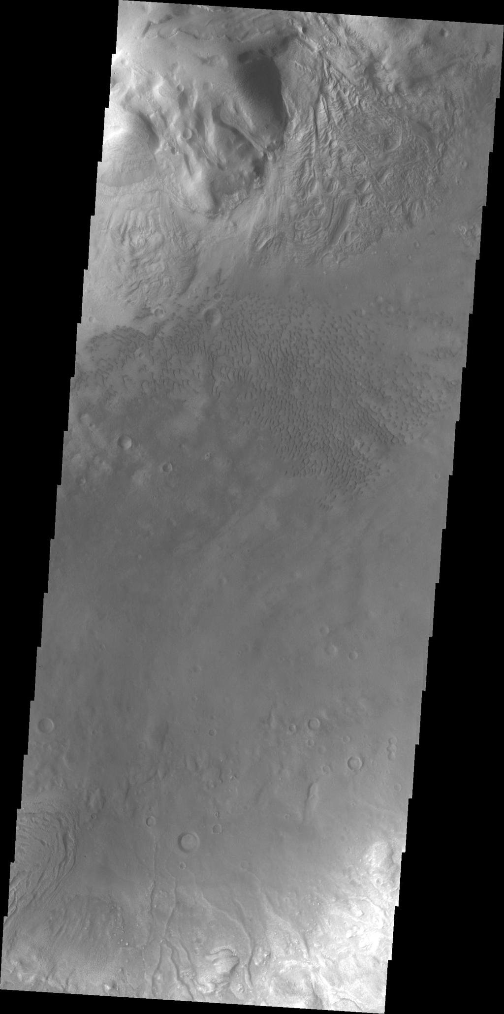 This image from NASA's Mars Odyssey shows some of the dunes of the floor of Moreux Crater.