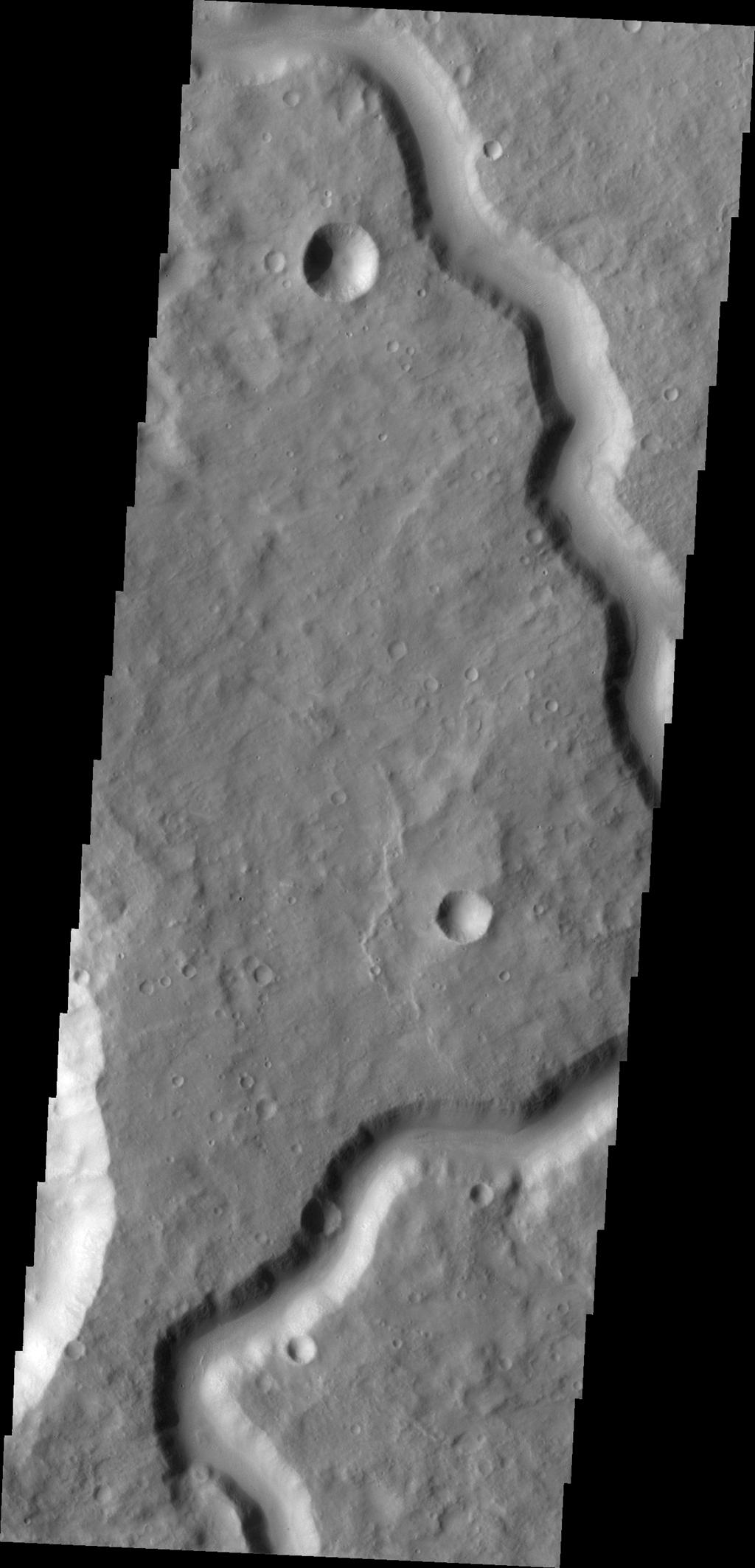 This image from NASA's Mars Odyssey shows part of an unnamed channel in Terra Cimmeria.