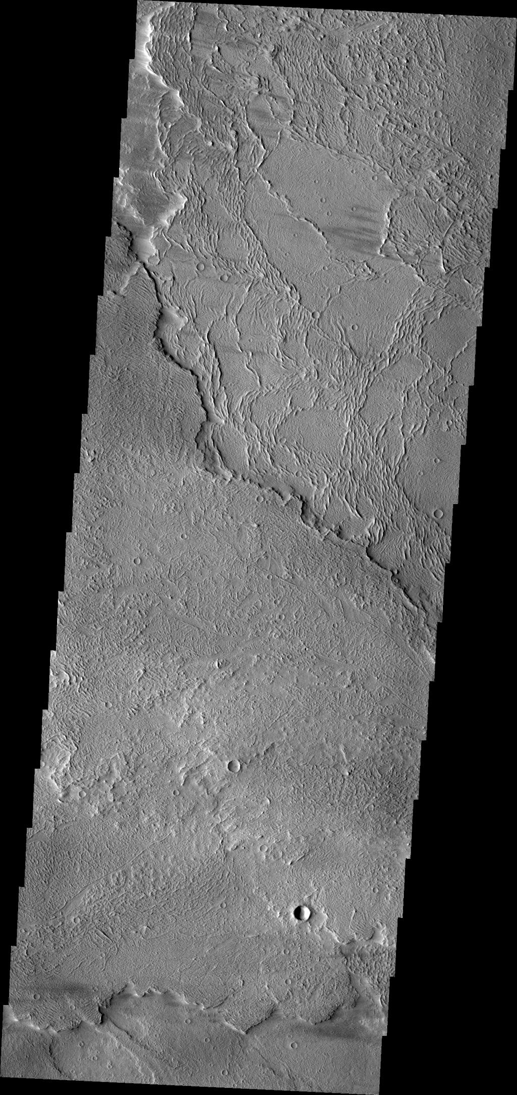 This image from NASA's Mars Odyssey shows different flow surfaces in Daedalia Planum.