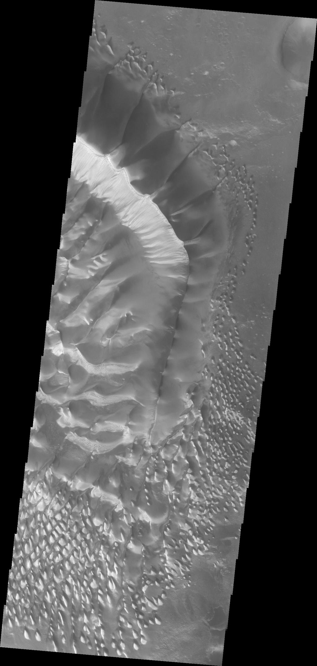 This beautiful huge dune and associated smaller dunes are located on the floor of Russell Crater. NASA's Mars Odyssey captured this image on Nov. 28, 2010.