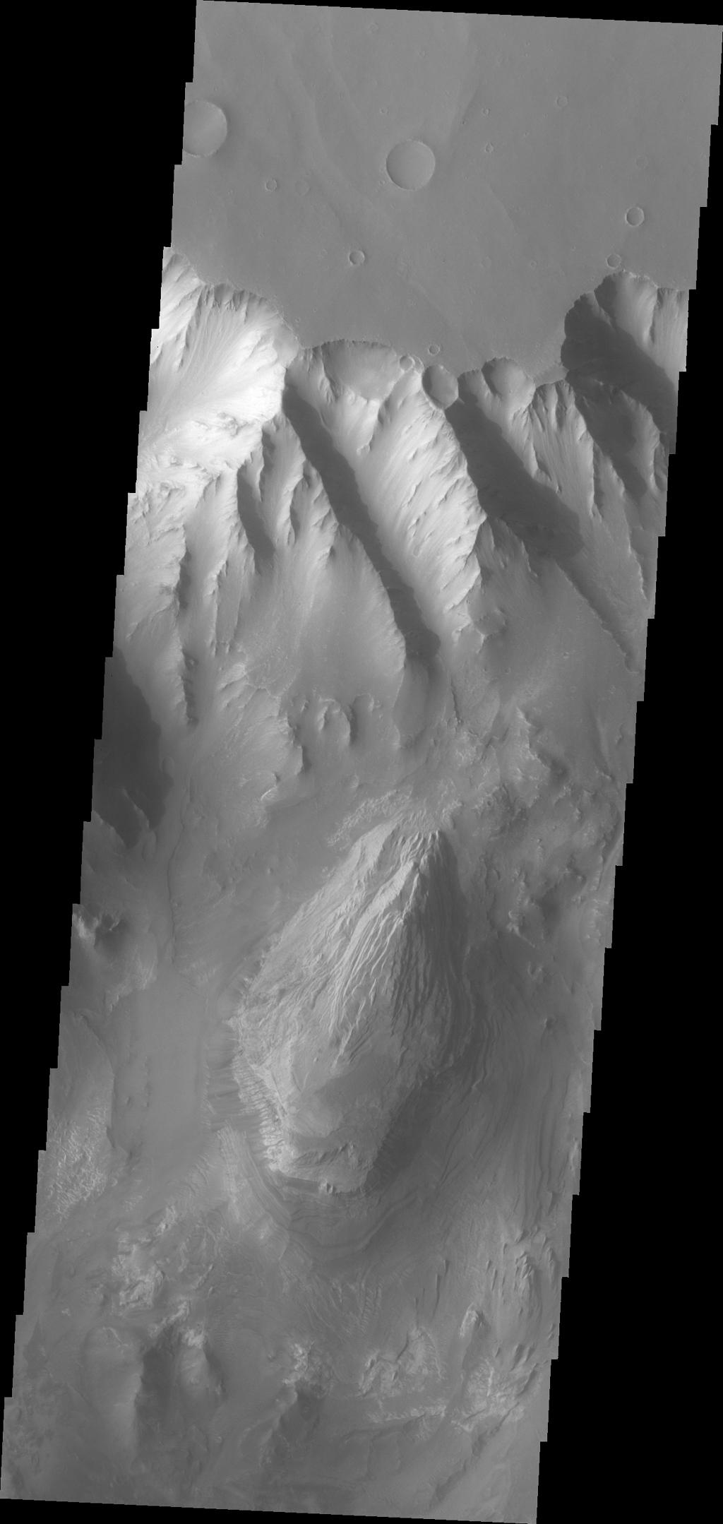 This image from NASA's Mars Odyssey shows the northern sidewall of Melas Chasma.