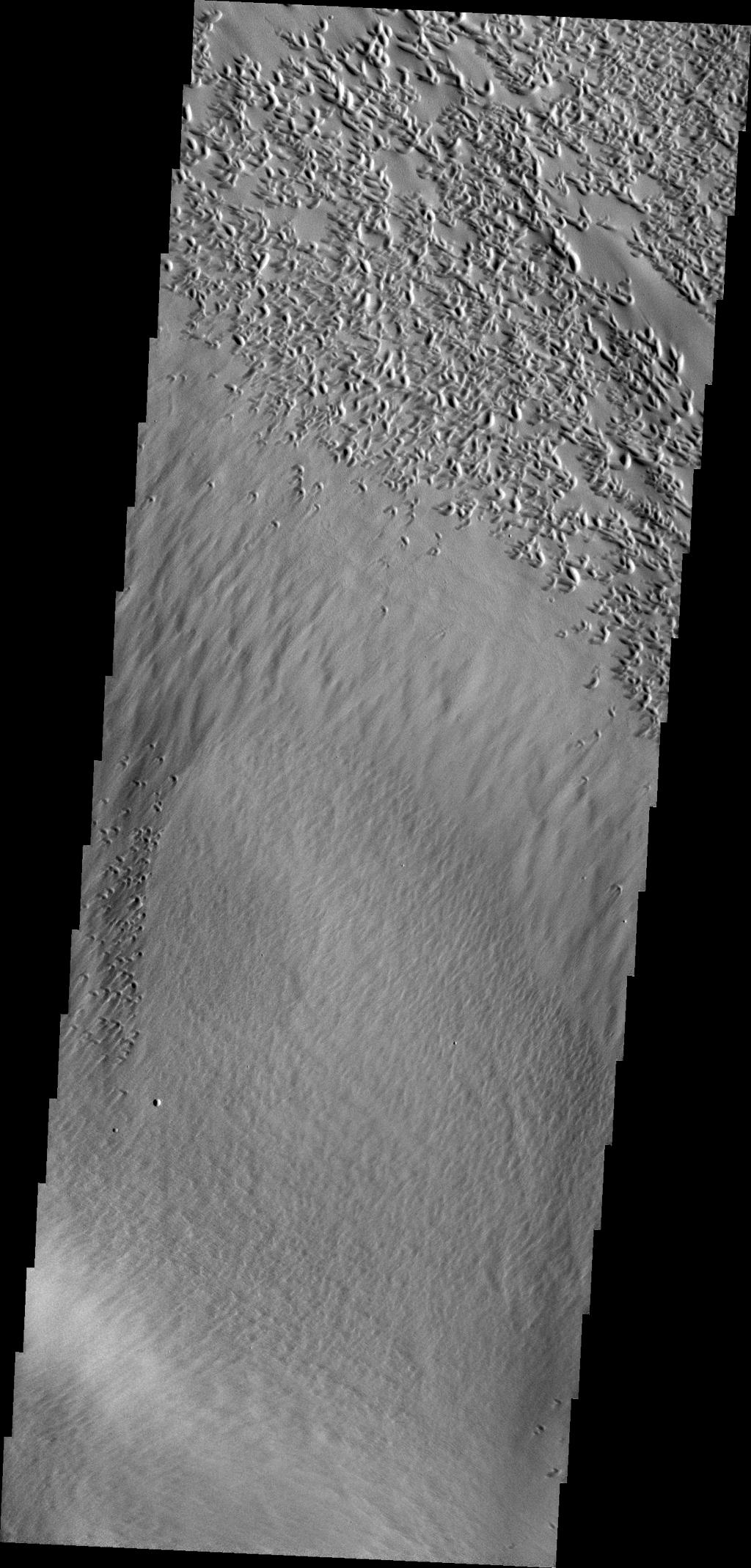 The pits at the top of this image are created by the action of the wind in this image captured by NASA's Mars Odyssey.