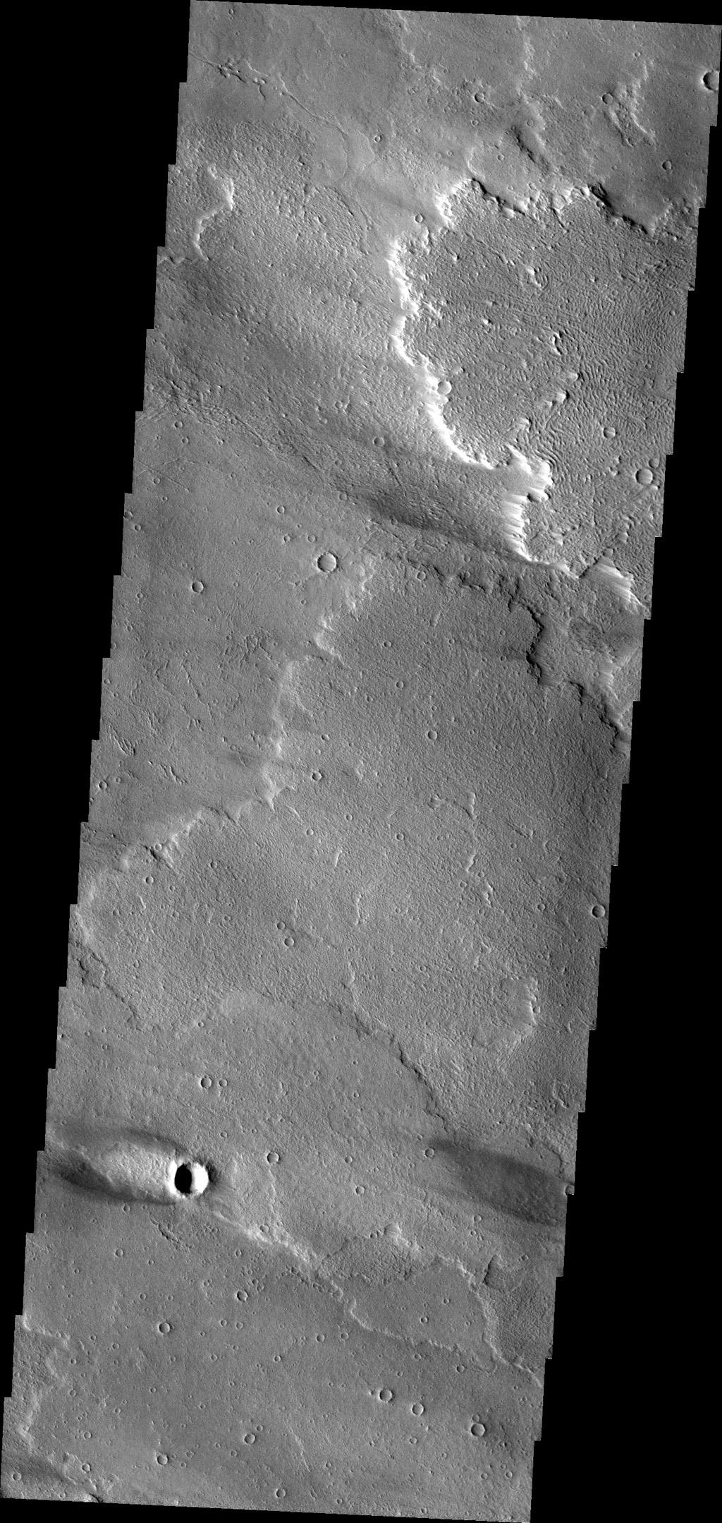 This windstreak is located on the volcanic plains of Daedalia Planum as seen by NASA's Mars Odyssey. The dark outer margin is the region of dust being removed from the surface. The inner bright part is where dust is being deposited.