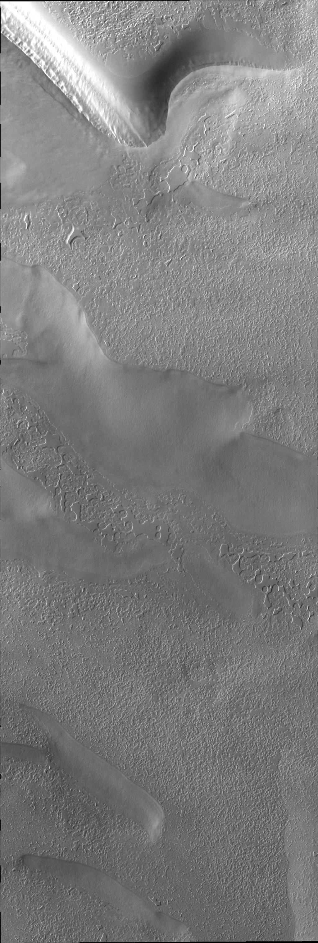 Surface textures vary in relation to topography on the south polar cap. Trough sides and floors are different from the flat top surface of the cap. This image was captured by NASA's Mars Odyssey.