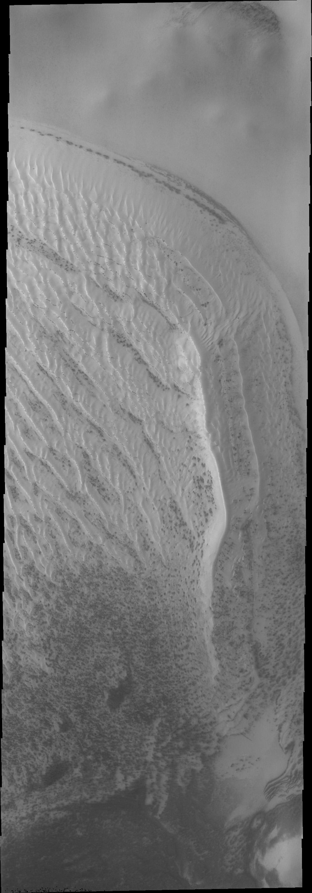 The dunes in Richardson crater, located at 72 degrees south latitude, are still covered in frost as seen by NASA's Mars Odyssey. The small dark spots are where the sun is beginning to remove the ice and reveal the darker dune materials below.