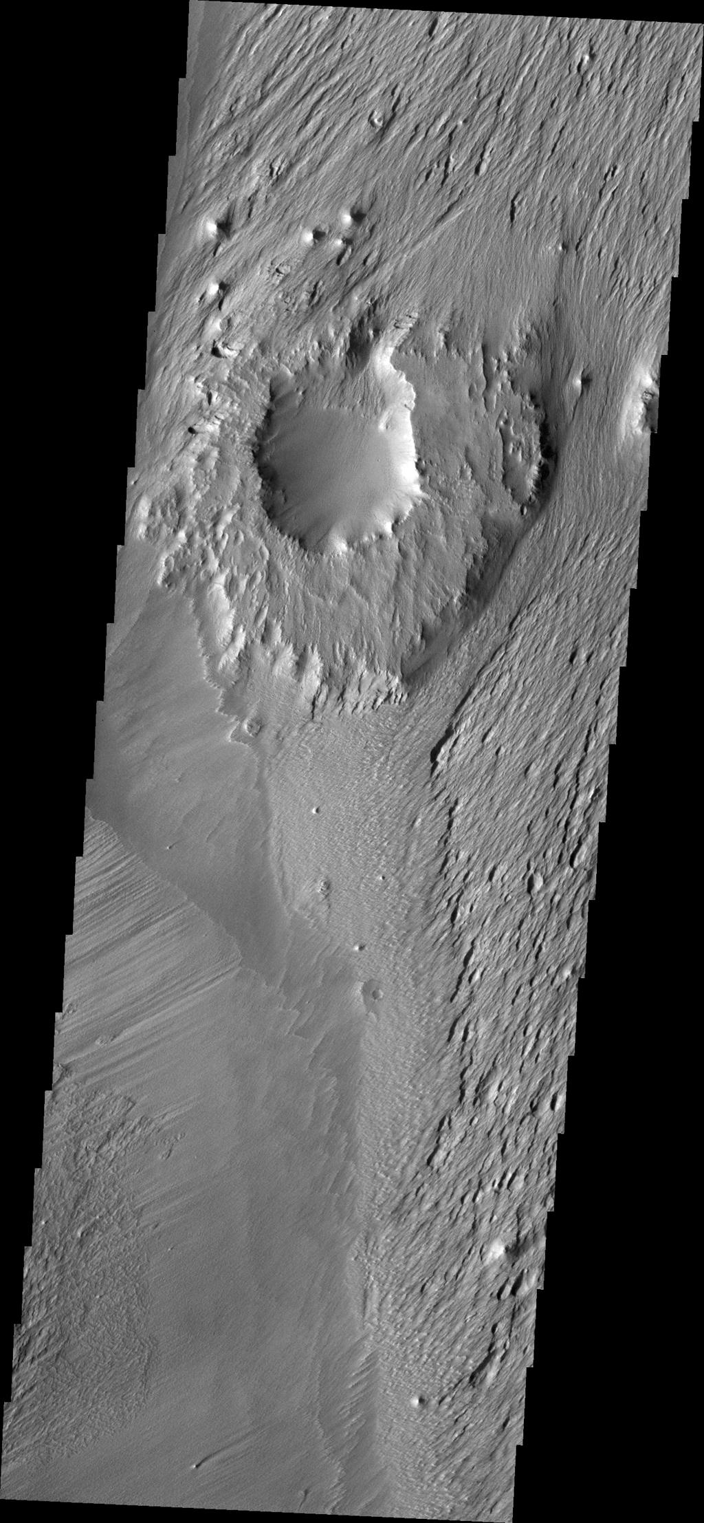 The ejecta materials of this crater are more resistant to erosion than the surrounding materials. The wind has eroded pits and other features around the crater causing it to become a topographic high. This image is from NASA's Mars Odyssey.