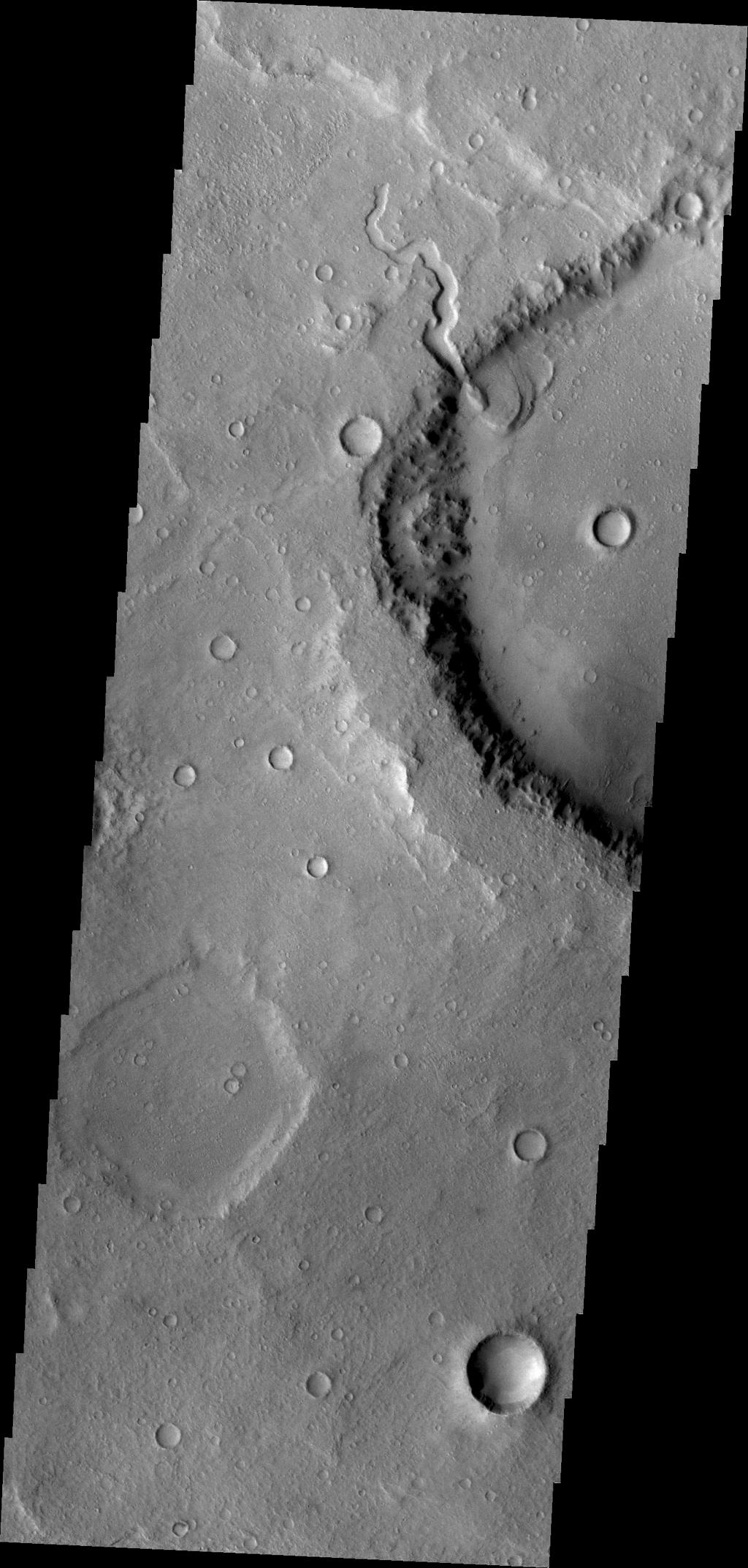 This unnamed crater in northern Terra Cimmeria has a small channel that created a delta feature. Such features are important indicators of liquid water in Mars' past as shown in this image from NASA's Mars Odyssey.