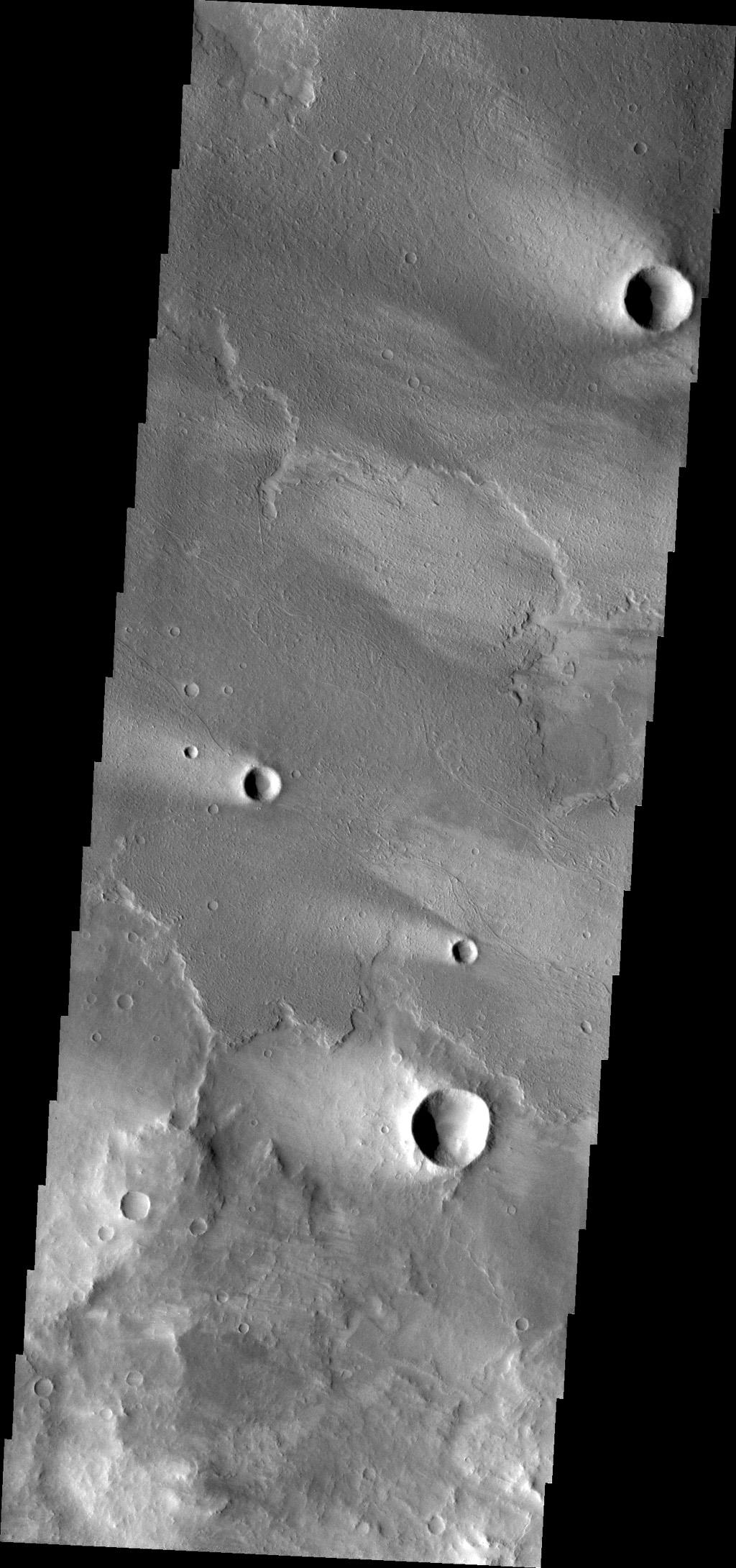 Windstreaks are a common feature on the surface of Daedalia Planum volcanic flows. This image was captured by NASA's Mars Odyssey.