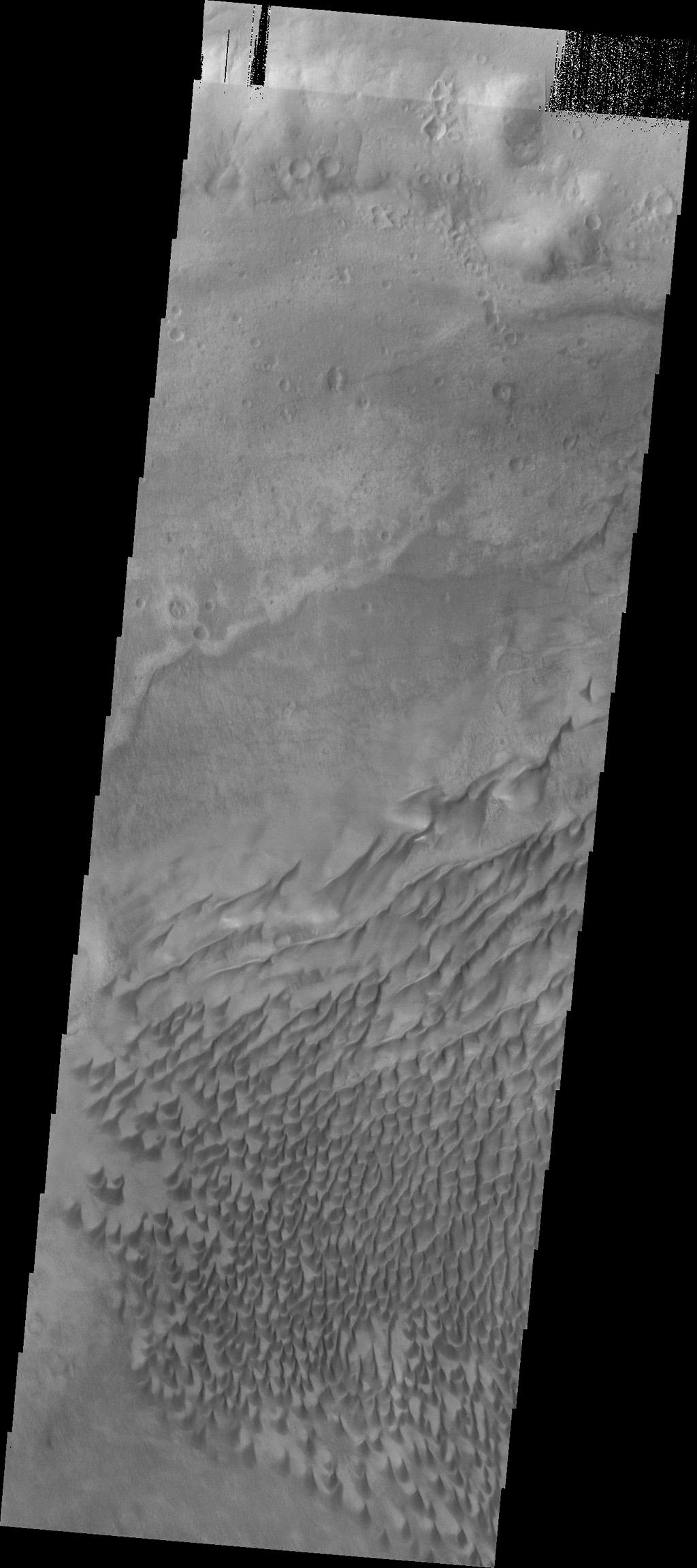 The sand dunes in this image from NASA's Mars Odyssey are located on the floor of Russell Crater.