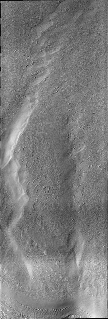 This image from NASA's Mars Odyssey of the south pole shows a surface texture called 'thumbprint,' for its uncanny resemblance to human fingerprints.