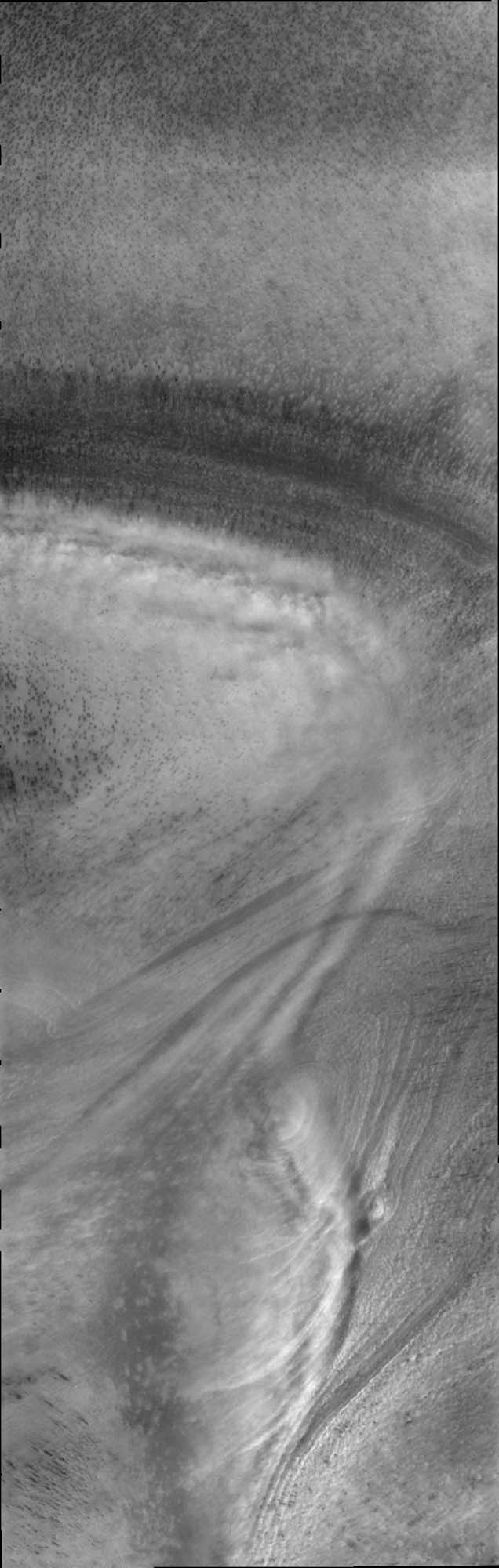 This image captured NASA's Mars Odyssey by of low altitude clouds perfectly illustrates how the surface topography of the polar cap controls the creation of visible clouds.