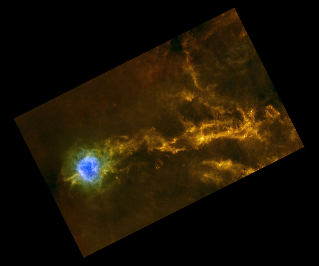 Dense filaments of gas in the IC5146 interstellar cloud can be seen clearly in this image taken in infrared light by the Herschel space observatory. The blue region is a stellar nursery known as the Cocoon nebula.