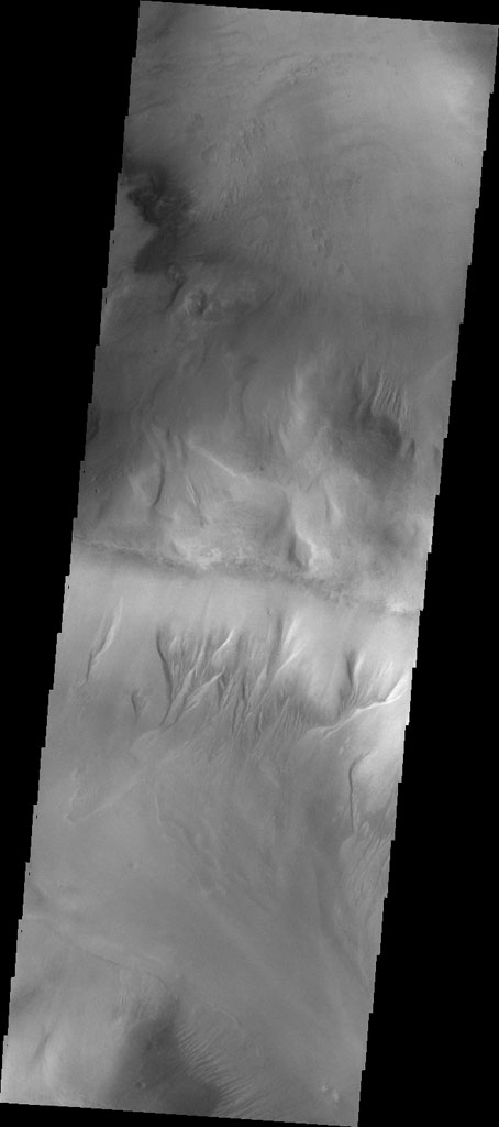 NASA's Mars Odyssey spacecraft shows that gullies have formed on the side of this ridge in northwestern Argyre Planitia.