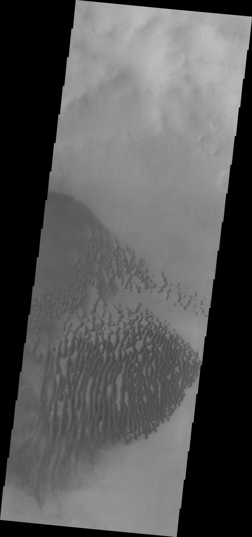 Dunes located on the floor of Lamont Crater are seen in this image captured by NASA's Mars Odyssey.
