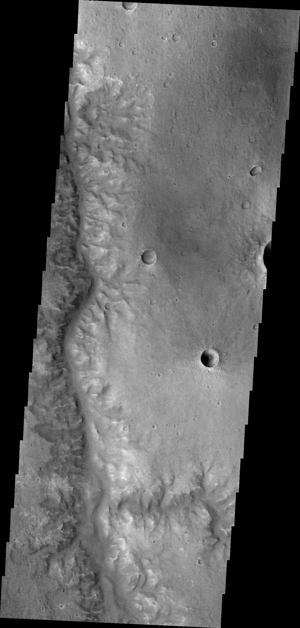 This image captured by NASA's 2001 Mars Odyssey shows unnamed channel flows northward in Margaritifer Terra.