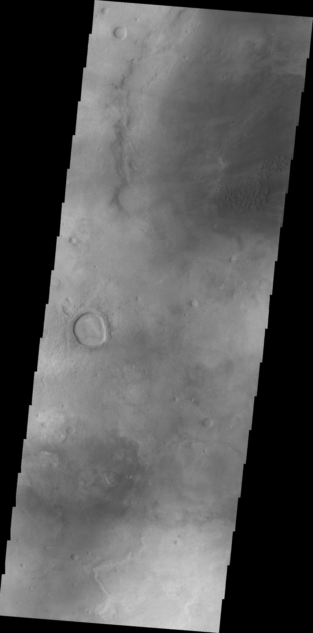 As seen by NASA's 2001 Mars Odyssey spacecraft, the dunes in this image are located on the western margin of Hellas Planitia.