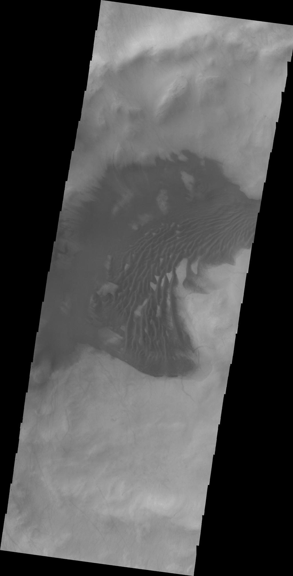 The dunes in this image captured by NASA's 2001 Mars Odyssey spacecraft are located in an unnamed crater in Sisyphi Planum.