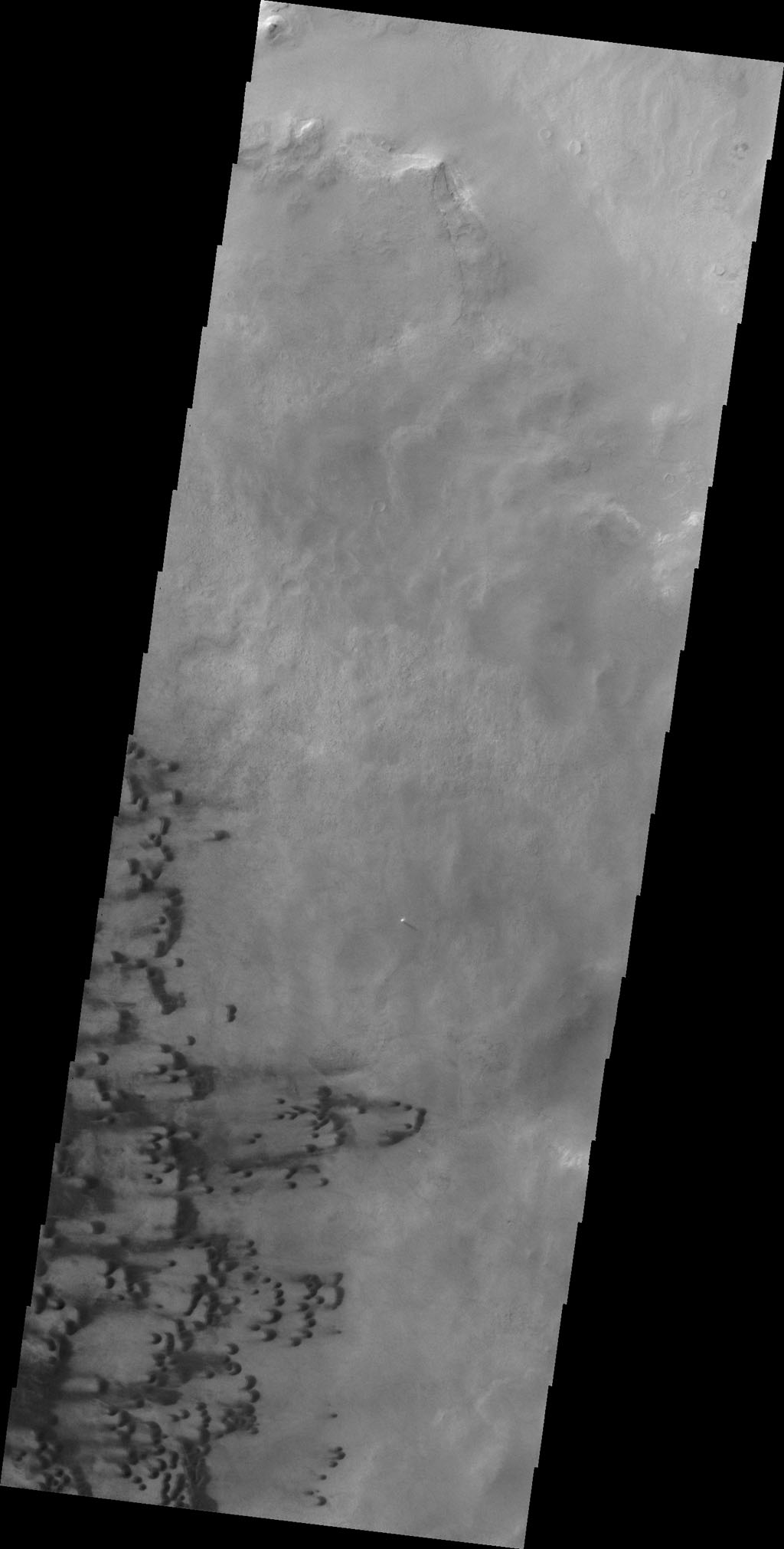 Small dunes are located on the floor of Darwin Crater as shown in this image from NASA's 2001 Mars Odyssey spacecraft.