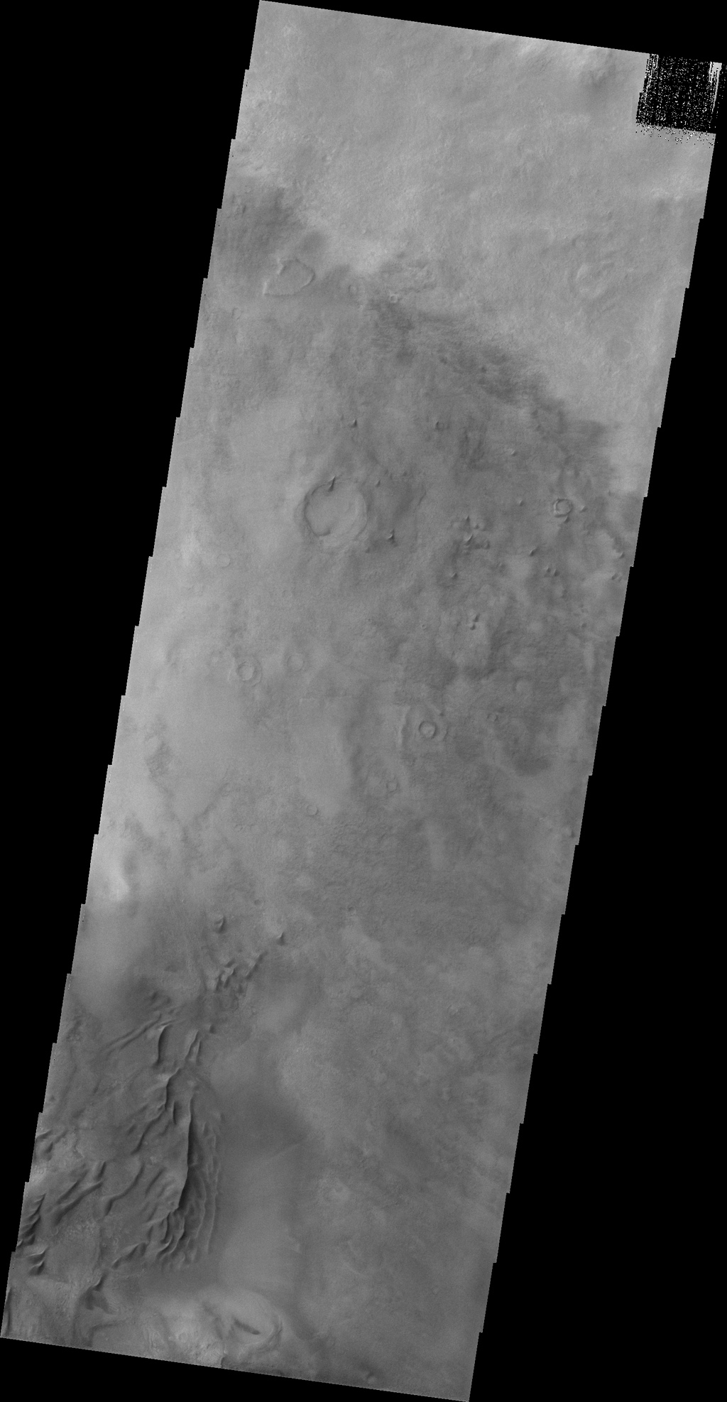 This image captured by NASA's 2001 Mars Odyssey spacecraft shows some of the dunes on the floor of Darwin Crater.