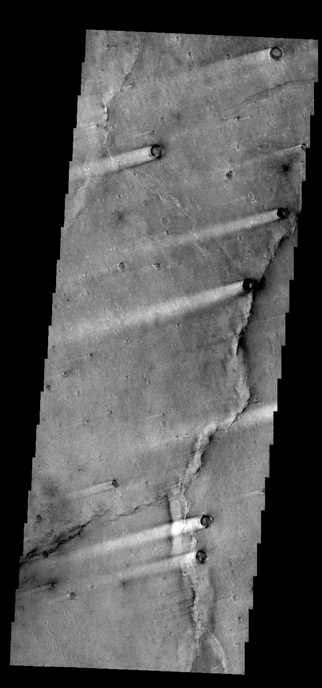 The windstreaks in this image from NASA's 2001 Mars Odyssey spacecraft are located in Syrtis Major Planum between Nili and Meroe Paterae.