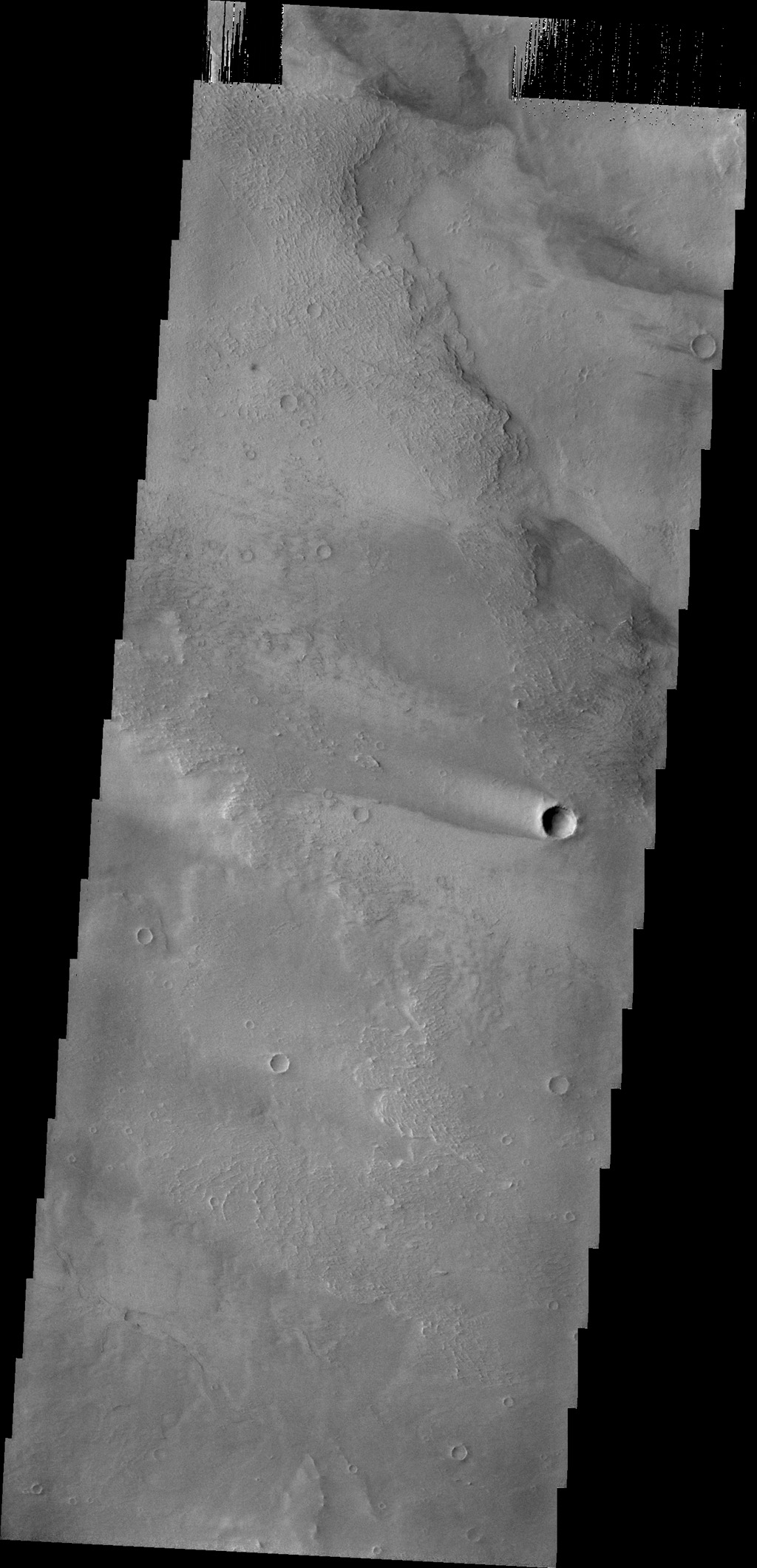 The windstreak is this image from NASA's 2001 Mars Odyssey spacecraft is located on the volcanic flows of Daedalia Planum.