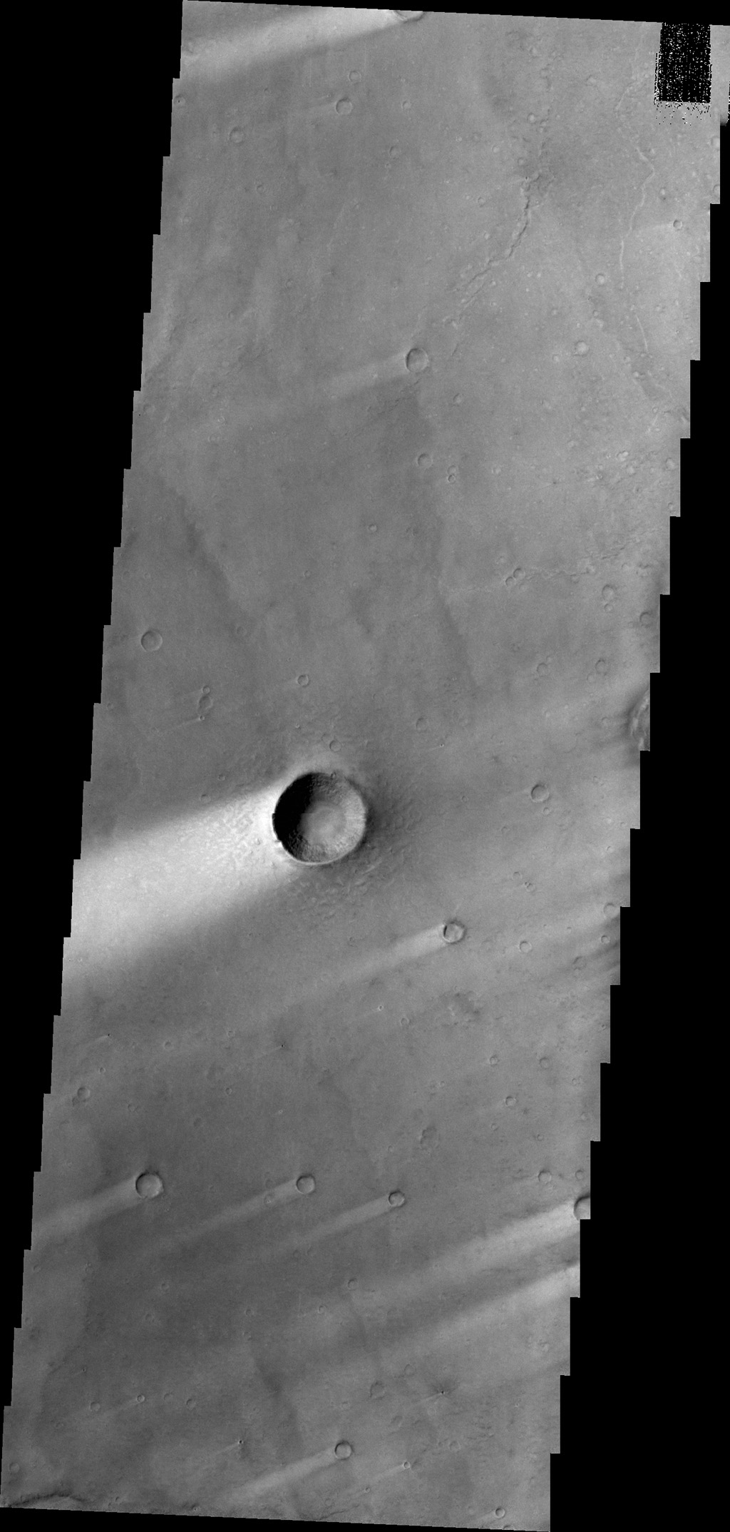 Windstreaks, like the ones in this image from NASA's 2001 Mars Odyssey spacecraft, are a common feature on the plains of Syrtis Major Planum.