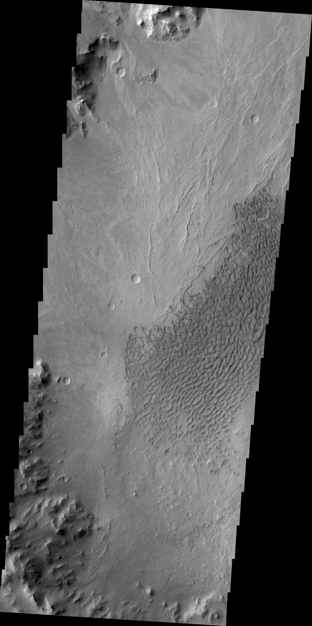 These dunes are located on the floor of an unnamed crater south of Vinogradov Crater. This image was captured by NASA's 2001 Mars Odyssey spacecraft.