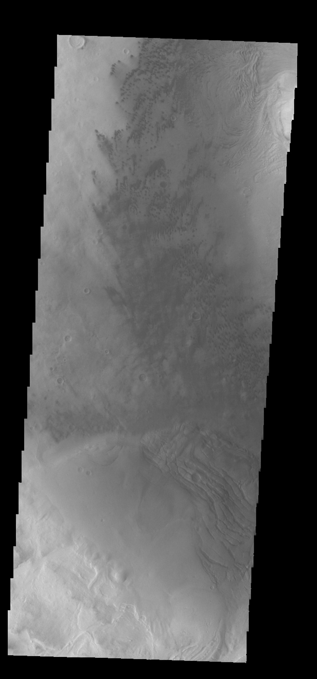 The small, dark dunes in this image captured by NASA's 2001 Mars Odyssey spacecraft are located on the floor of Moreux Crater.