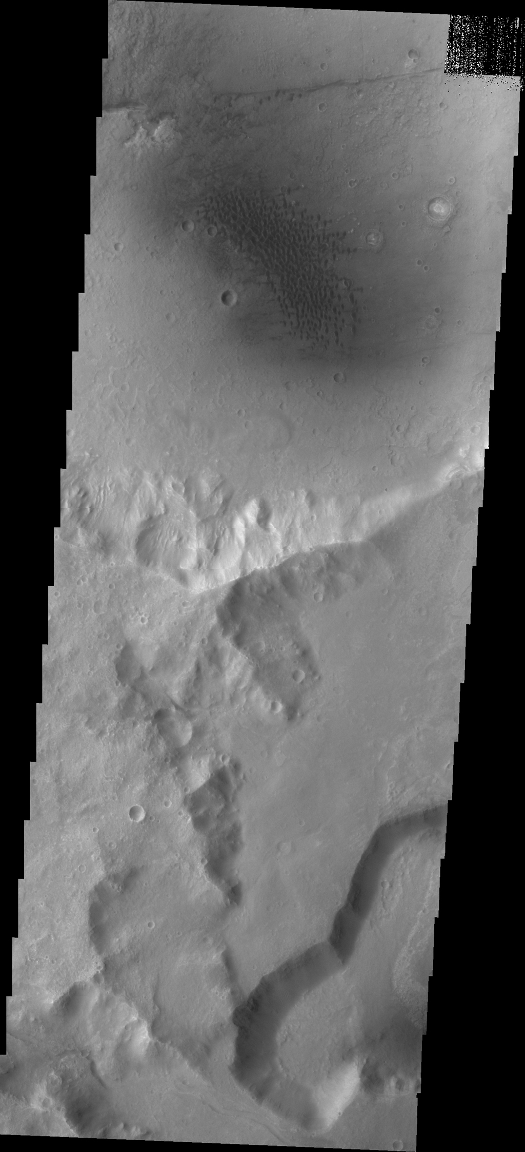 The dunes in this image captured by NASA's 2001 Mars Odyssey spacecraft are located in an unnamed crater on the eastern margin of Tempe Terra.