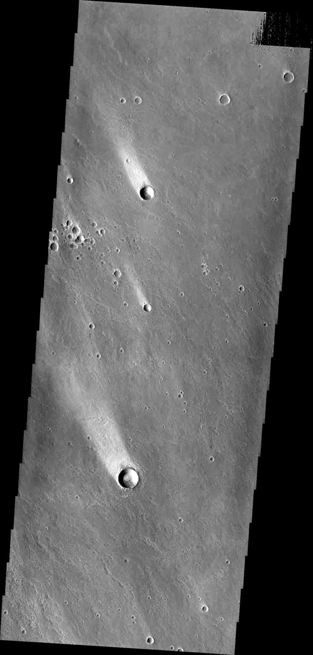 These windstreaks, located north of Olympus Mons, indicate winds from the south-southeast. This image is from NASA's 2001 Mars Odyssey spacecraft.