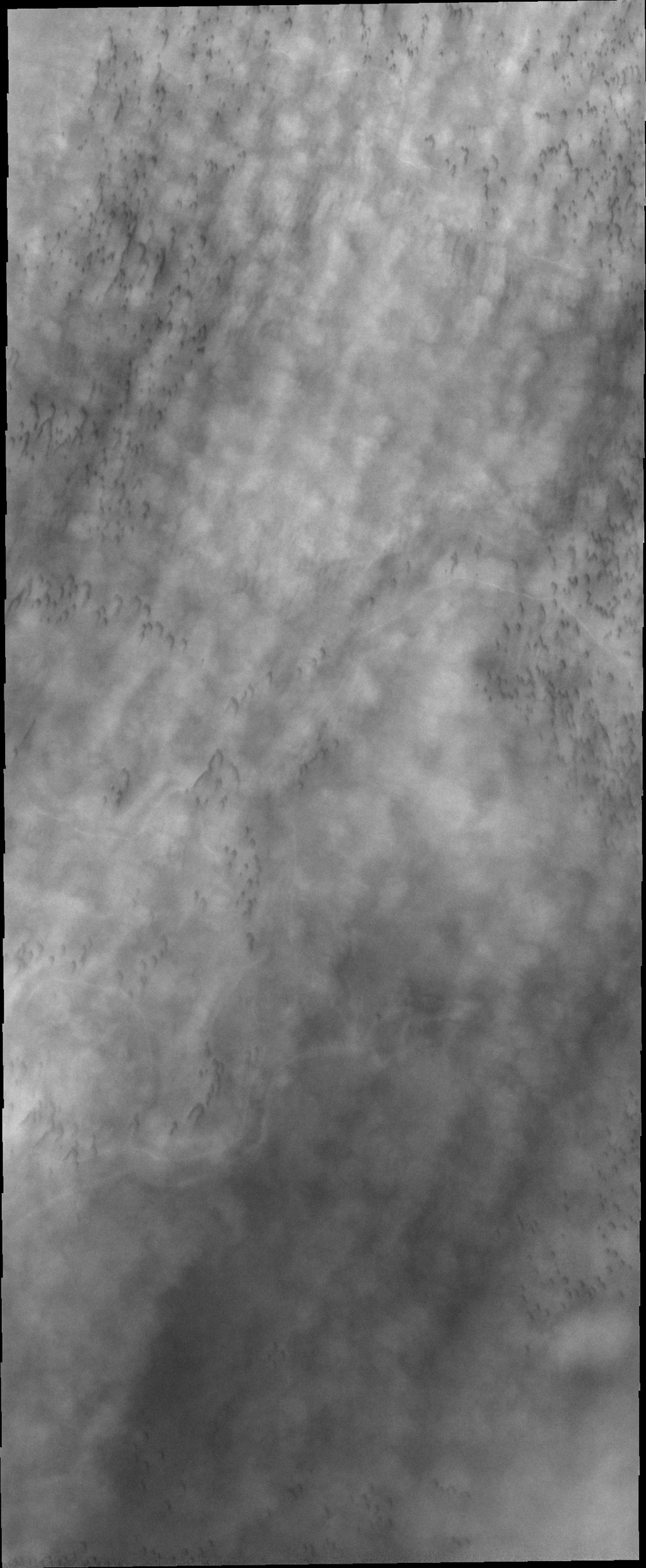 Clouds are common feature over the north polar dunes in spring. This image captured by NASA's 2001 Mars Odyssey spacecraft shows line after line of puffy clouds, with hints of dark sand dunes below.