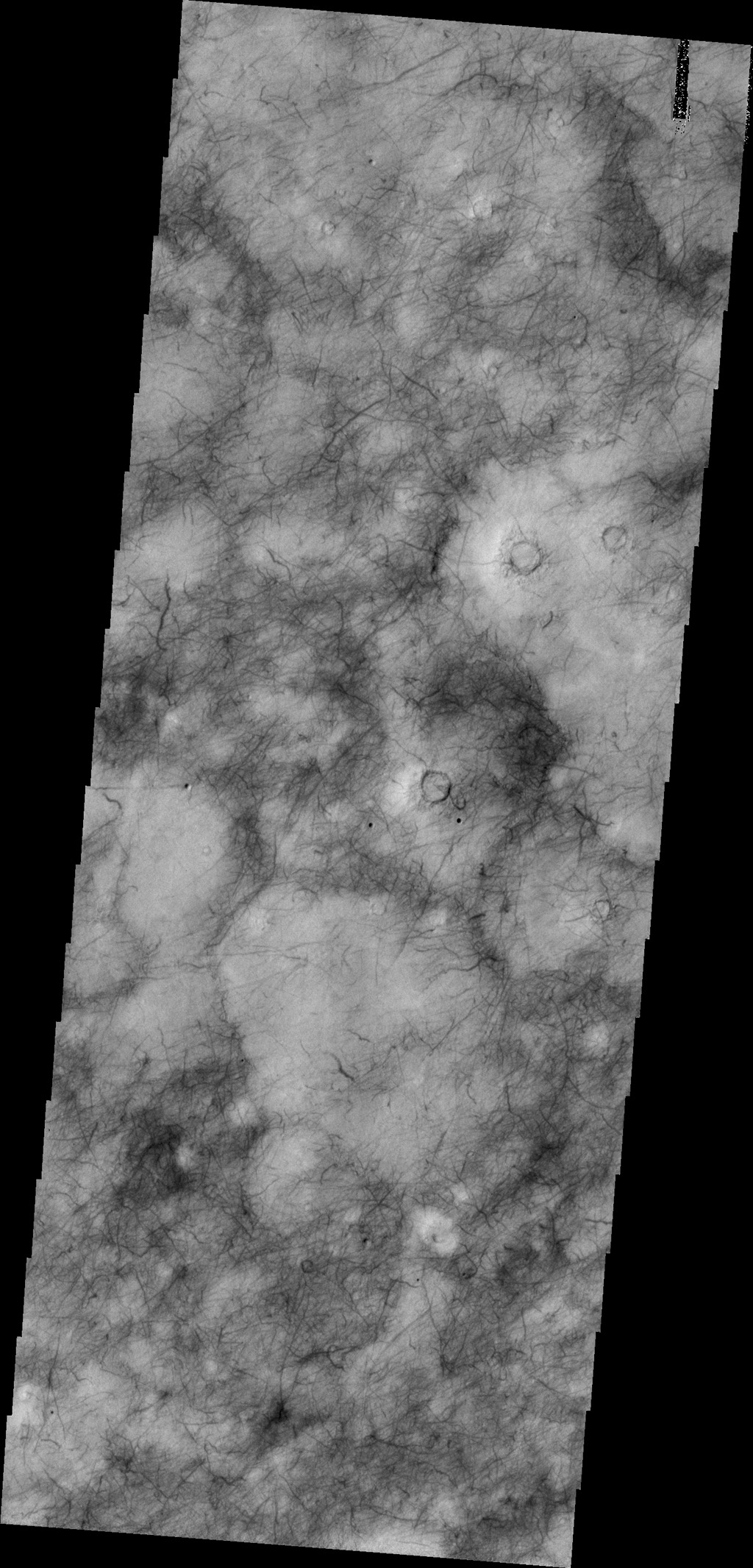 The dark surface markings of Utopia Planitia are thought to be caused by dust devils as seen by NASA's 2001 Mars Odyssey spacecraft.