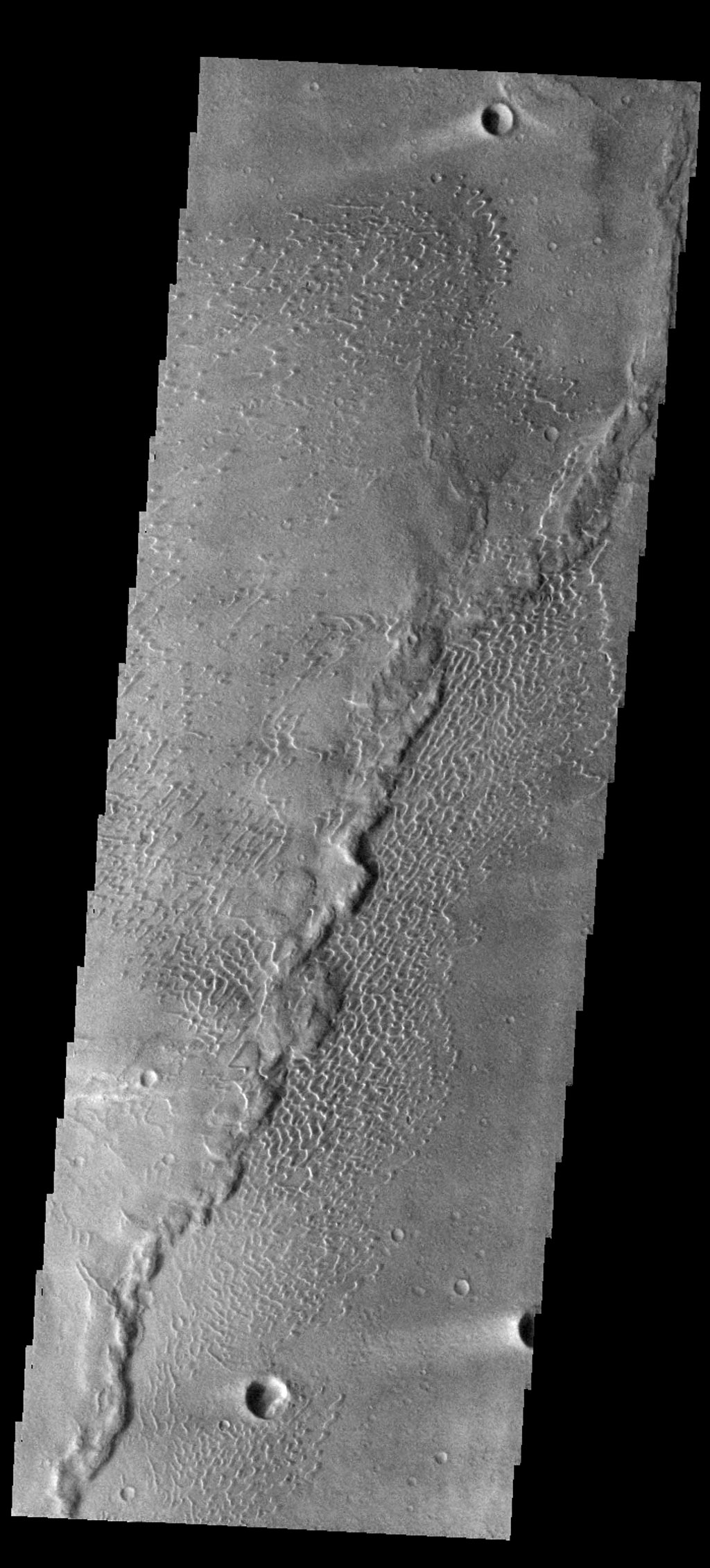 The dunes in this image captured by NASA's Mars Odyssey spacecraft are located on the margin of Meroe Patera.