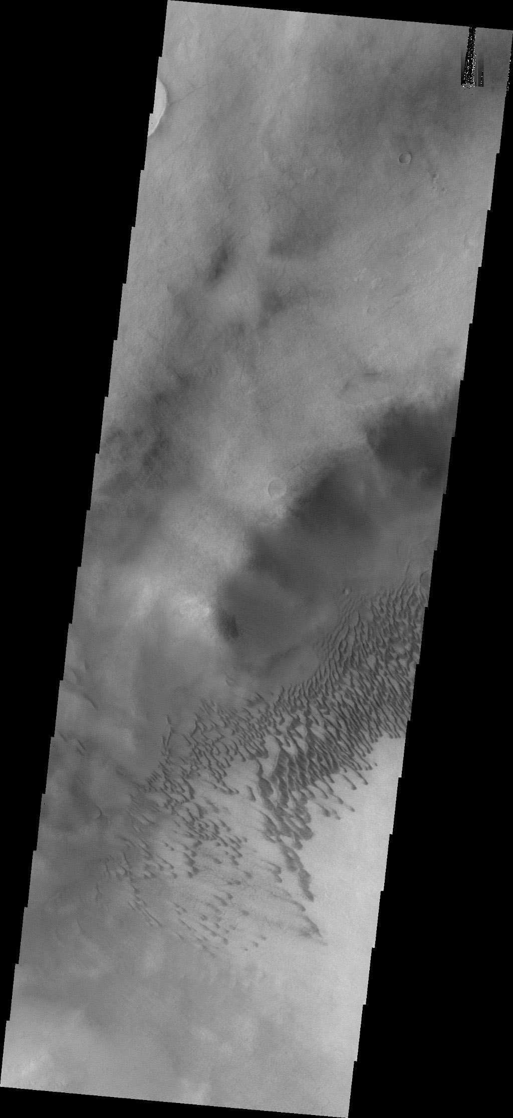 This image captured by NASA's 2001 Mars Odyssey spacecraft shows part of the dune field on the floor of Brashear Crater.