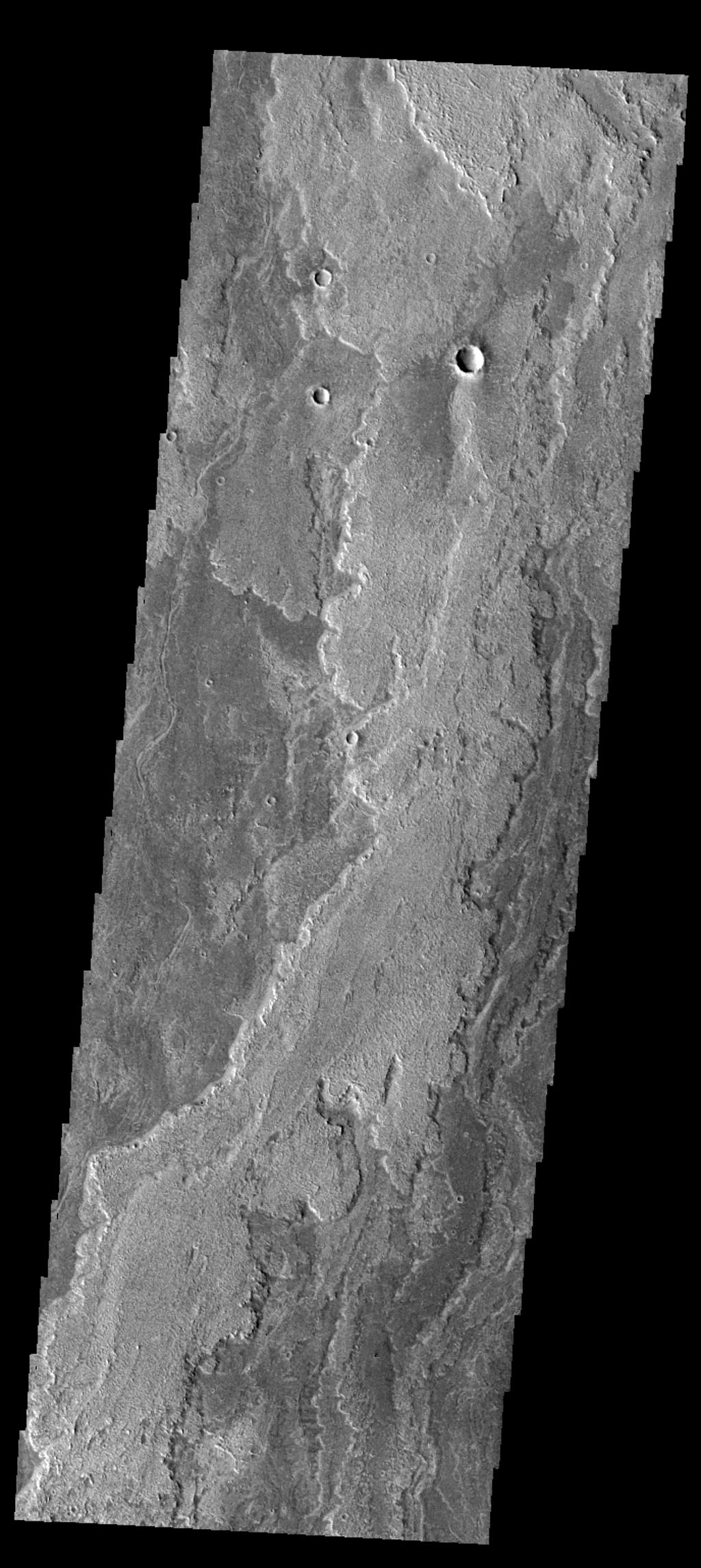 This image captured by NASA's 2001 Mars Odyssey spacecraft shows more of the extensive lava flows in Daedalia Planum.