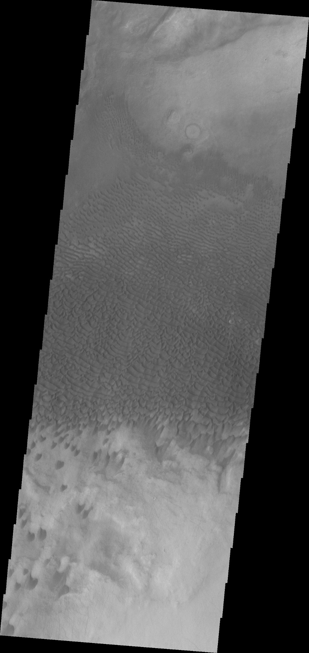 This VIS image shows dunes in a topographic low within Aonia Terra.