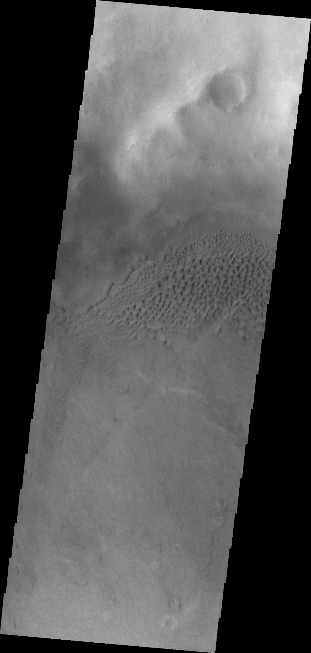 This image captured by NASA's 2001 Mars Odyssey spacecraft shows part of the dune field on the floor of Hussey Crater.