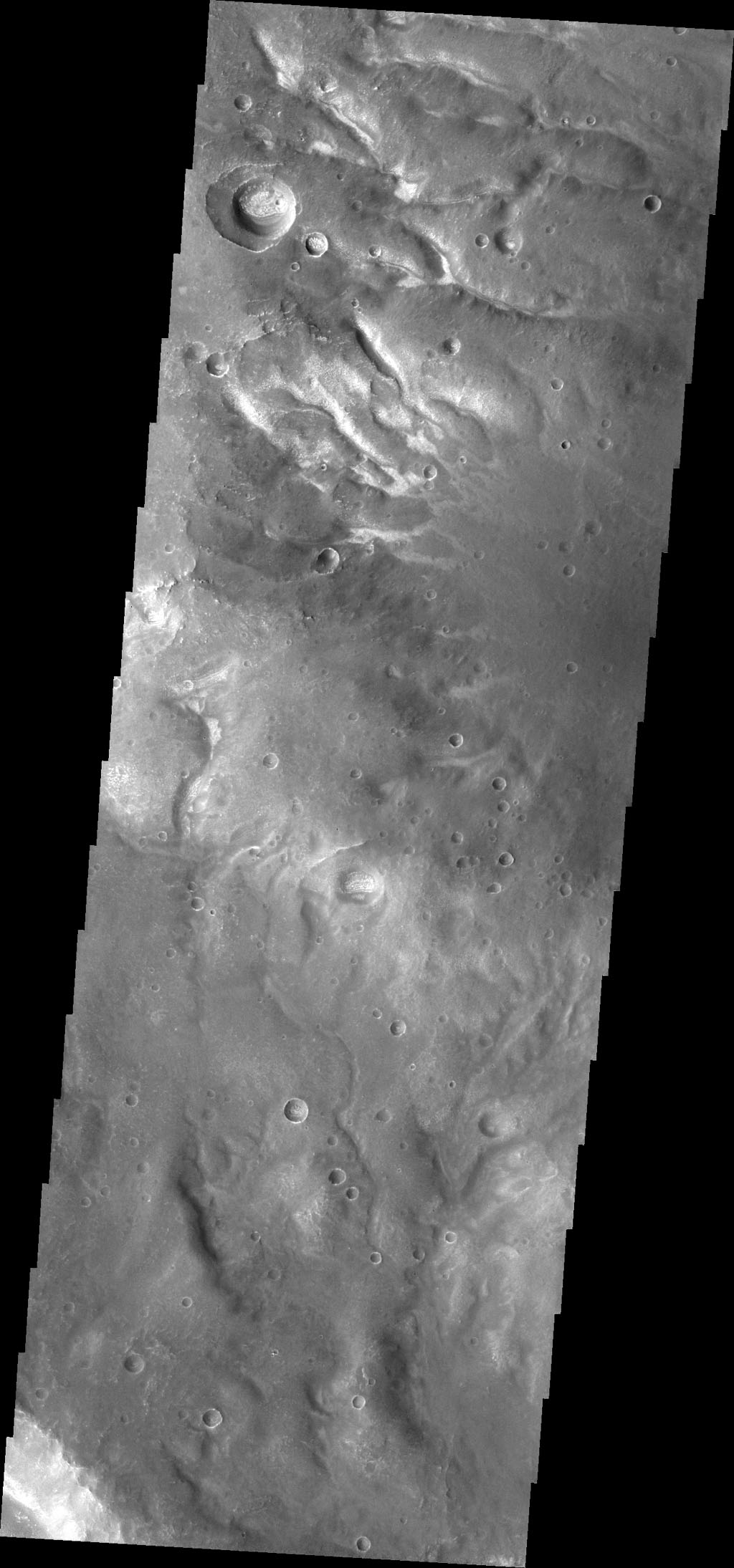 A network of small channels is visible in image from NASA's 2001 Mars Odyssey spacecraft.
