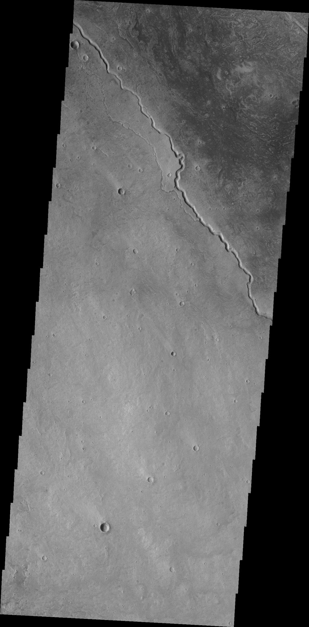 The channels in this image from NASA's 2001 Mars Odyssey spacecraft are located on the northwestern margin of the Elysium Volcanic complex on Mars. Channels are very common in this region and were likely created by the flow of lava.