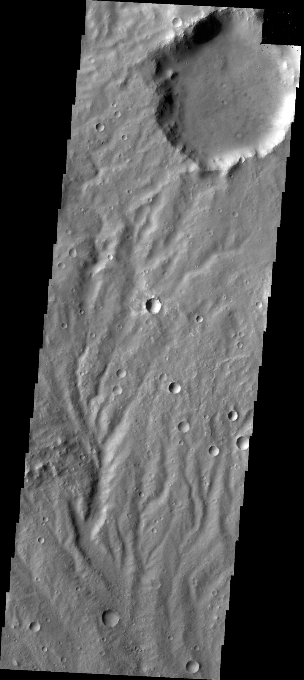 The channels in this image captured by NASA's 2001 Mars Odyssey spacecraft are dissecting a slope near Huygens Crater.